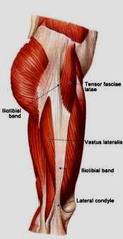 Le syndrome de l 39 essuie glace comparer les versions for Douleur sur le cote exterieur du genou